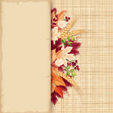 Card with colorful autumn leaves on a sacking background. Vector eps-10. Vector parchment card with colorful autumn leaves on a beige sacking background Vector Illustration