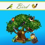 Card with colorful birds on the tree and cat. Card with colorful birds on the tree and near cat Stock Photography