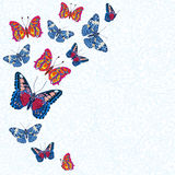 Card with colorful butterflies Stock Photos
