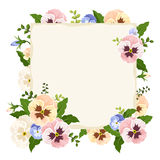 Card with colorful pansy flowers. Vector illustration. Stock Images