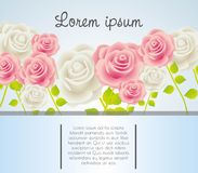 Card with colorful roses Royalty Free Stock Image
