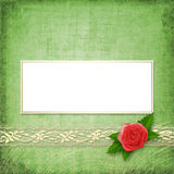 Card for congratulation with buttonhole and lace Royalty Free Stock Photography