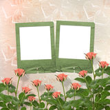 Card for congratulation with frames and pink roses Stock Images