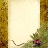 Card for congratulation or invitation Stock Photo
