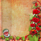 Card for congratulation with red roses Royalty Free Stock Image