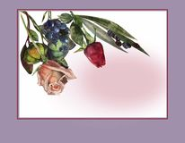 Card for congratulation Royalty Free Stock Photos