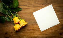 Card for congratulation with yellow rose in Royalty Free Stock Photo