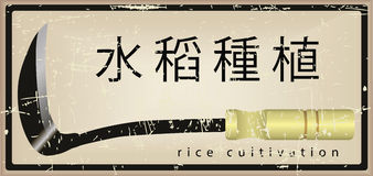 Card on the cultivation of rice Royalty Free Stock Photography