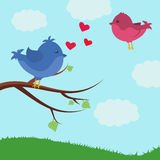Card with cute birds. Bird on a branch. Valentine`s day Royalty Free Stock Photos