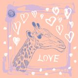 Card with cute giraffe and heart. Sketch. love. Pink and lilac. Royalty Free Stock Photography