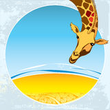 Card with cute Giraffe on a nature view background Stock Image