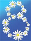 Card with daisies. White daisies on a blue background. Vector illustration Royalty Free Stock Photography