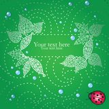 Card with decorative leaves and ladybug Royalty Free Stock Image