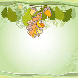 Card with decorative oak leaves and acorns Stock Photos
