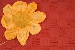 card den röda fjädern för blomman Fotografering för Bildbyråer