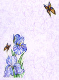 Card design with decorative flowers and butterfly Royalty Free Stock Photo