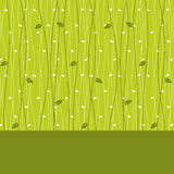 Card design with leaves  seamless pattern Royalty Free Stock Photography