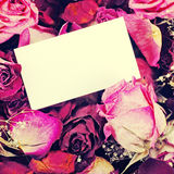 Card with dried roses Stock Photography