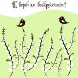 Card for Easter with branches of willow vector illustration