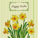 Card with easter daffodil in center and frame Stock Photography