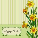 Card with easter daffodil in center and frame Royalty Free Stock Images