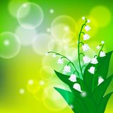 Card with field of lily-of-the-valley flowers Stock Image
