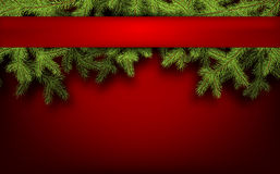 Card with fir branches Royalty Free Stock Photos