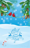 Card with fir tree branches and bullfinch birds on light blue Stock Photo