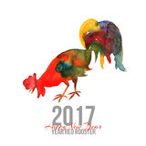 Card with fire cock in watercolor. Isolated on white. Card with fire cock in watercolor. Chinese calendar Zodiac for 2017 New Year of rooster. Isolated on white Royalty Free Stock Images