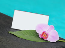 Card and flower orchid and a card with space for your text Stock Photos