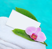 Card and flower orchid and a card with space for your text Royalty Free Stock Image