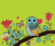 Card flower, owl Stock Photos