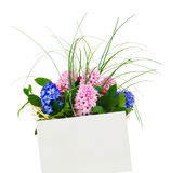 Card and flowers Royalty Free Stock Photo