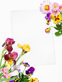 Card with flowers Royalty Free Stock Photography