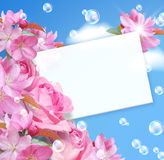 Card with flowers. Paper and bubbles Stock Photo
