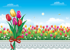 Card with flowers on a background of blue sky. Flower meadow with tulips and daisies Stock Photos
