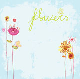 Card   flowers background Stock Images