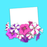 Card with flowers petunias. Vector. Card with lilac, striped, pink petunia flowers and buds with shadow on turquoise background. Vector illustration Royalty Free Stock Photo