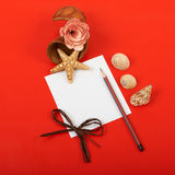 Card with flowers. Shells and pencils on red background Stock Photos
