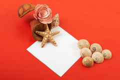 Card with flowers. Shells and pencils on red background Stock Images