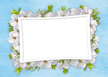 Card For Holiday With Flowers Royalty Free Stock Image