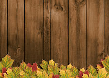 Card For The Holiday With Autumn Leaves Royalty Free Stock Images