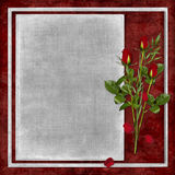 Card For The Holiday With Red Rose Stock Photos