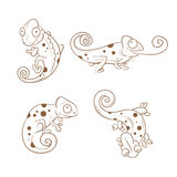 Cartoon chameleons set. royalty free illustration