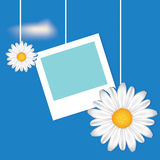 Card with frame and camomile Stock Photo