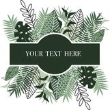Card with green leaves - vector illustration, eps royalty free illustration