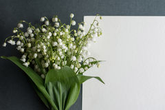 Card with fresh flowers lily of the valley Royalty Free Stock Photo