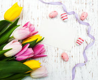 Card with fresh flowers tulips Royalty Free Stock Photos