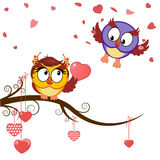 Card funny owls declaration of love Stock Images