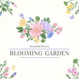 Card with garden flowers. Royalty Free Stock Photography
